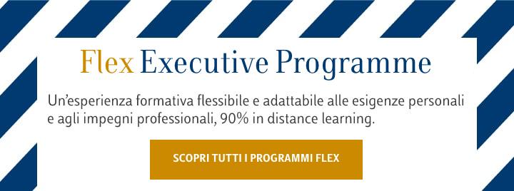 Flex Executive Programme